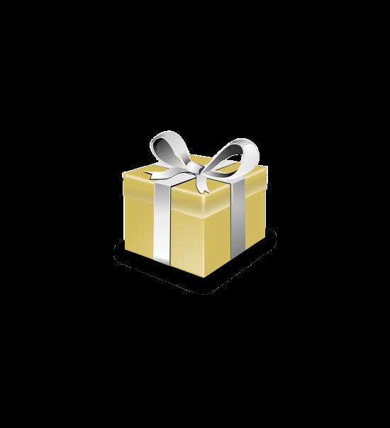 Sostienici present-147317_1280